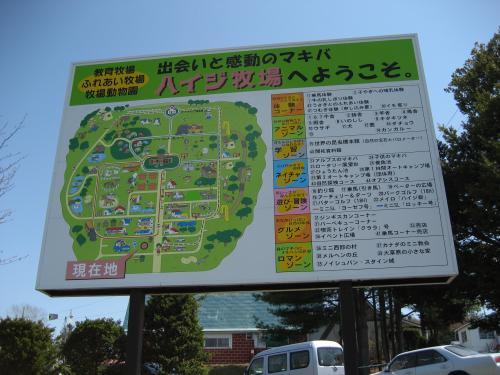 長沼町のハイジ牧場とながぬま温泉へ