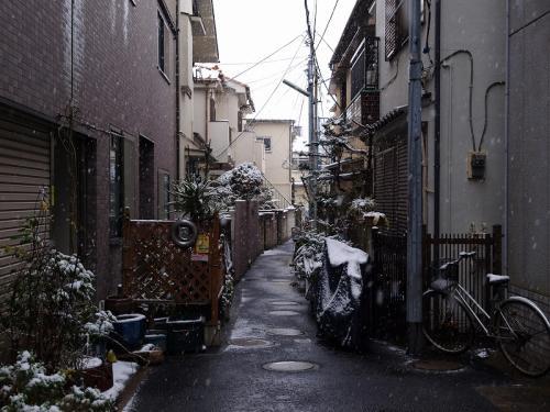 東京の路地に小雪の降る