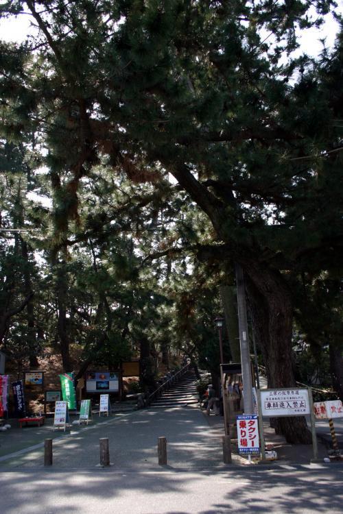 静岡満喫。絶景&グルメ前編(三保の松原~富士宮)