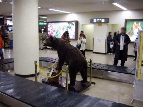 トマム スノボツアー記、2010/3/13-15