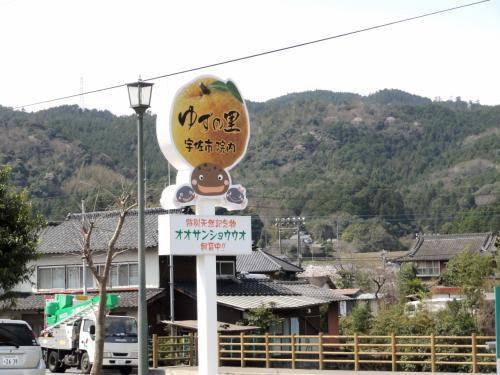 大分県 【オオサンショウウオ見物&昭和の町訪問】