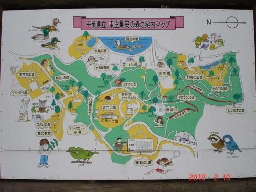 東庄県民の森でバードウォッチング [2010](1)