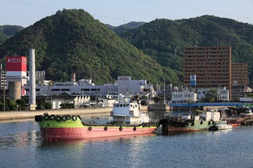 除虫菊の島 (尾道市因島)