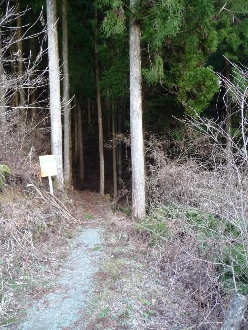 日本の滝百選『龍王の滝』~帰路◆2010春・高知県の滝めぐり【その12・最終章】