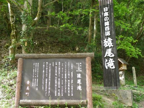 再訪『日本の滝百選/猿尾滝』~帰路◆2010年5月・兵庫県北部の滝めぐり【その9・最終章】