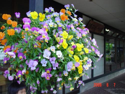 岩手県 鶯宿温泉「森の風」と盛岡手作り村