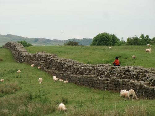 ハドリアヌスの長城の画像 p1_10
