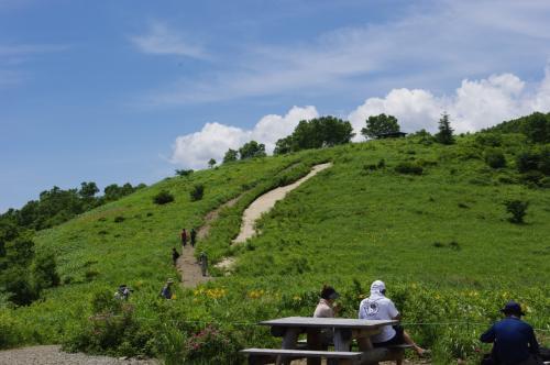 〔志賀&草津〕キスゲと温泉を楽しむ旅(4)~野反湖を彩るキスゲの花畑