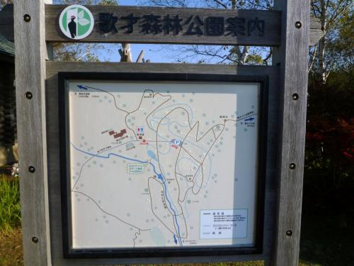 165-フットパスで「ブナ北限の里」黒松内町を歩く