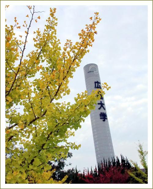 ひとり旅 [807] 古き街並みを照らし出す幻想的な三千本の竹灯り<たけはら憧憬の路>広島県竹原市