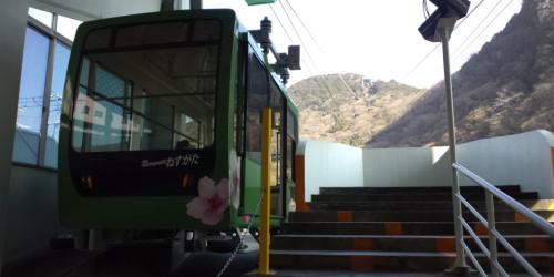 2011年2月 南伊豆への旅☆ ?
