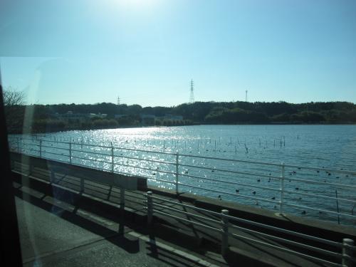 観山寺温泉・丸子宿・美保の松原 バスの旅 6   焼津さかなセンター