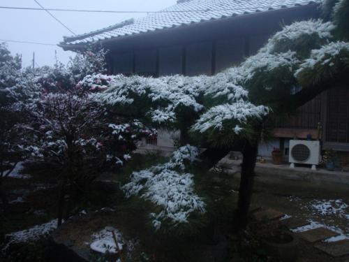 GOGO!みのたん 銀世界を歩く 四国の春の雪化粧