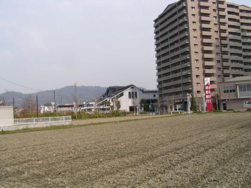 関西線の加茂駅
