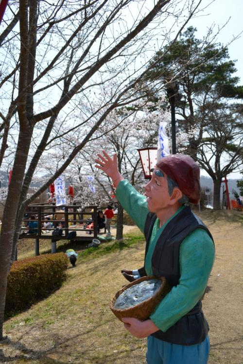 年寄にやさしい三休公園で桜の花見
