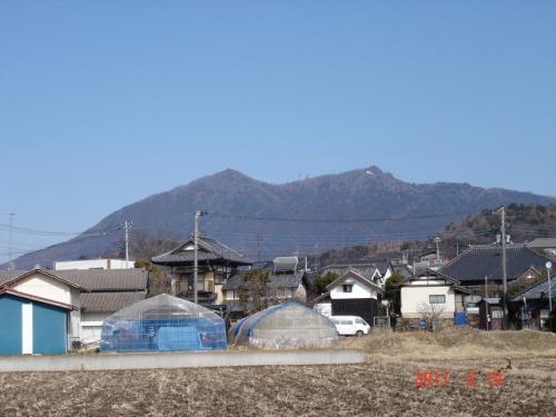筑波山でバードウォッチング [2011](1)