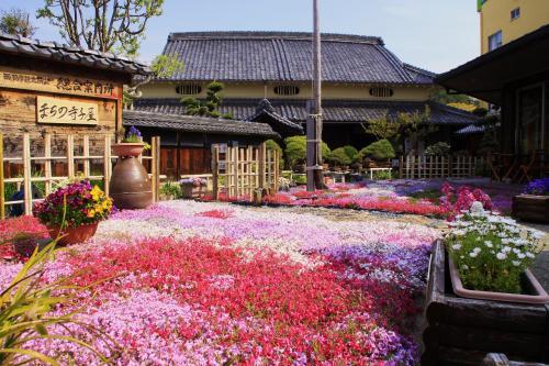 兵庫県・西脇★「日本のへそ」の花は、しばざくら