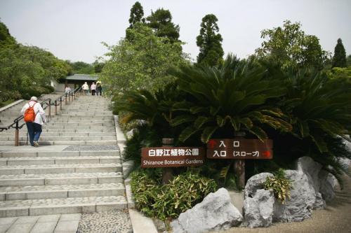 Solitary Journey [901] **春の花をさがして**中~北九州ひとり旅 <北九州唯一の花木公園 白野江植物園>北九州市門司区