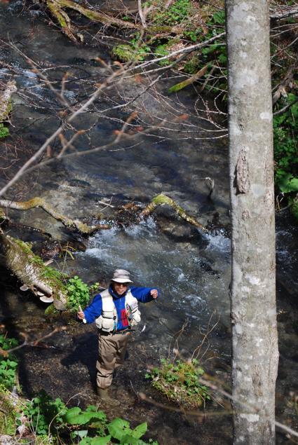 道南釣りの旅-2011-/湧水の川、芽吹く渓谷を満喫