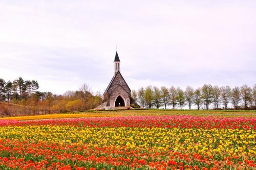 ひるがの高原牧歌の里 「花の教会」でウェディング