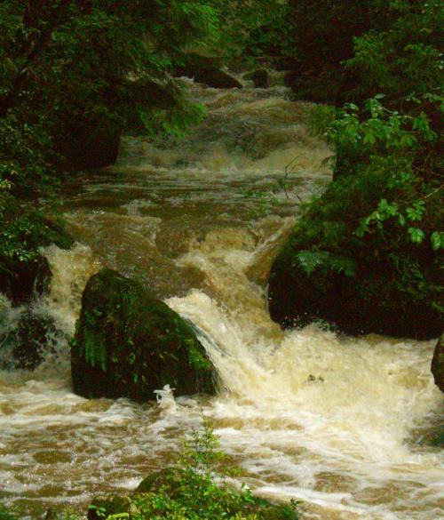 濁流を 集めて激し 鶏鳴の滝