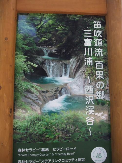 西沢渓谷 日帰りバスツアー