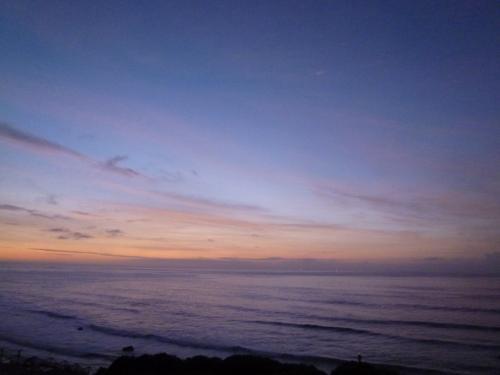 夏の伊豆白浜! 海を眺めて優雅に過ごす♪ Vol7(第3日目) 厳かな白浜神社♪と下田の美味しい寿司!