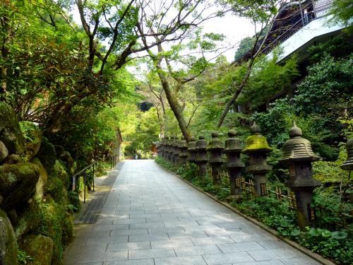2010年秋 福岡&大分: 世界最大の涅槃像、高塚愛宕地蔵尊、そして1、000万本ものコスモス!