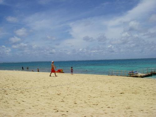 夏への扉シリーズ:沖縄北部の8日間
