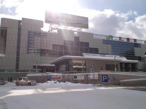 冬の北海道へようこそ♪♪≪おたる水族館&小樽雪あかりの路&オフ会≫
