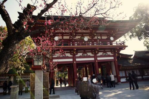 Solitary Journey [1002] ようやく梅の花が満開♪菜の花も見ごろでした。<北九州・想い出の地へひとり旅>長崎県・佐賀県・福岡県