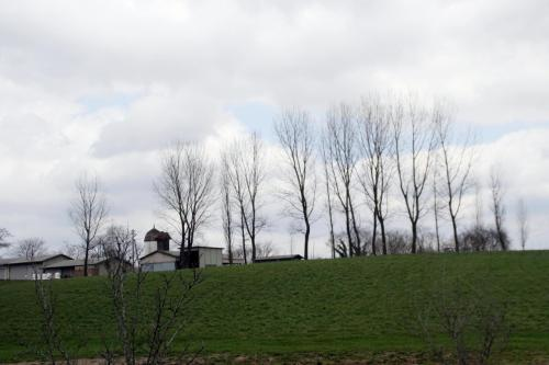Solitary Journey [1019] 早咲き品種のスイセンが咲いていました♪<備北丘陵公園'スイセンファンタジー2012'>広島県庄原市