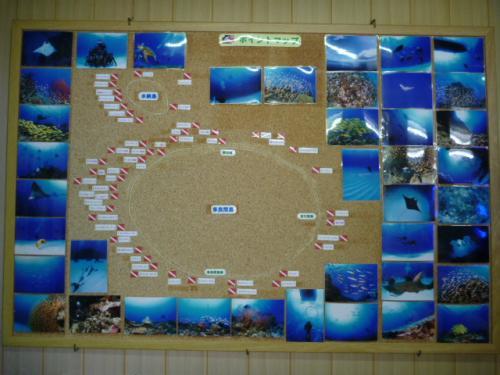 うーじの島、多良間の海【2:ダイビング】