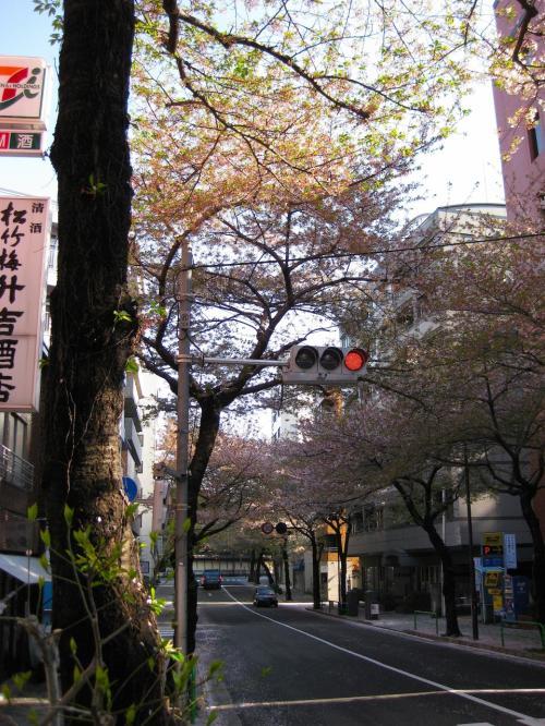 2012.4.15 来たぜ!東京♪江戸の街♪ 東京の魅力再発見!...東京2日目