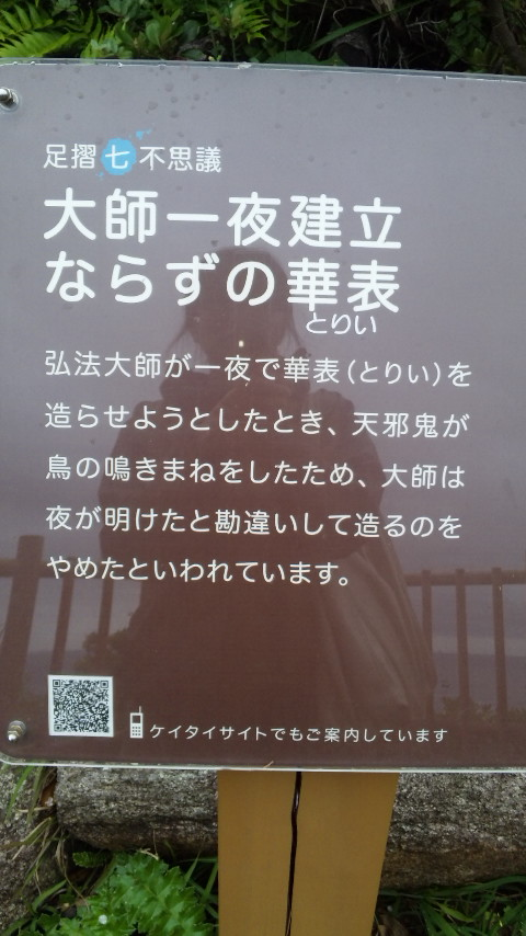 500_25270006
