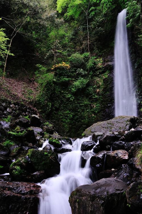 2012年G.W.の旅(2)養老の滝