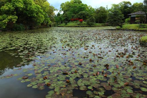 2012・春 岡山の旅 ◆ 1日目 津山の近代建築と勝山のれん巡り