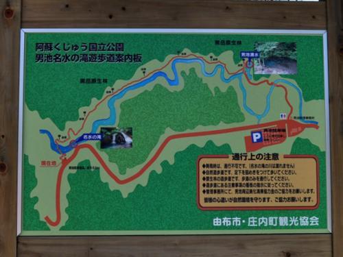 新緑の黒岳山麓やタデ原湿原を散策