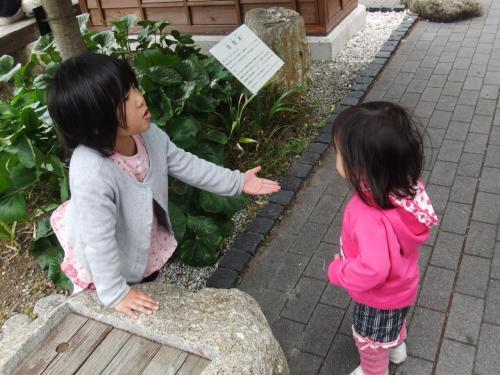 2012GWはアクアトト岐阜へ☆