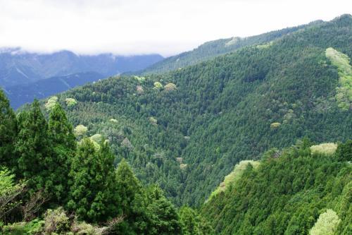 岳人の森へ