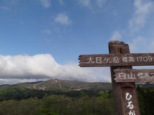 2012・5・黒鯛求めて釣り旅行IN能登九十九湾・百楽荘