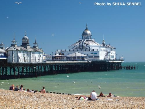 eastbourne chat There are many different events throughout the year in eastbourne find out more about these events today.