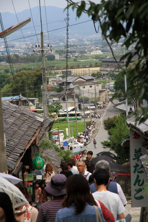 矢田寺へあじさい鑑賞に行ってきました。 奈良県大和郡山市の金剛山寺(通称矢田寺)。