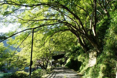 近鉄線の旅 ~後半は吉野山から、ならまちと大和郡山へ