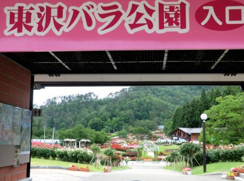 6月の薔薇★ 村山市「東沢バラ園」を散策♪
