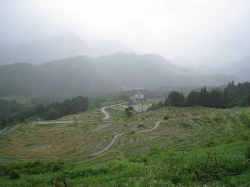 2009 丸山千枚田と熊野本宮大社の参詣道 No1 丸山千枚田を数えてみる