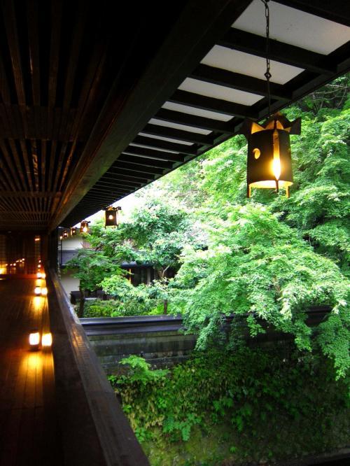 今回も素敵なお宿だったなぁ(^^)「東府やResort&Spa-Izu」さん一人旅【出立日編】