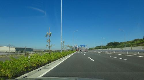 東京ゲートブリッジの完成した姿を見に行きました。