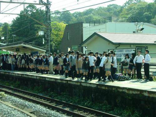 鎌倉 返り花名月院へ向かふ道
