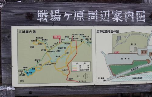 奥日光でバードウォッチング [2012](1) 戦場ヶ原・竜頭の滝編